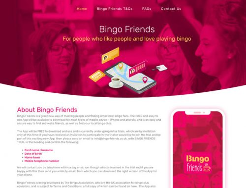 Bingo Friends App and Web Development